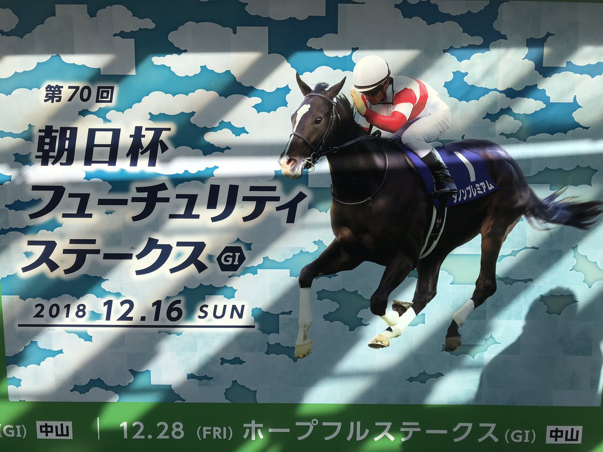阪神 競馬 場 天気