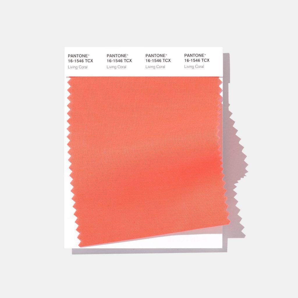 RT @graffica_info: #PANTONE El Color del Año 2019 de Pantone es el Living Coral https://t.co/dzY99gXkbM https://t.co/C0jstRJQrb