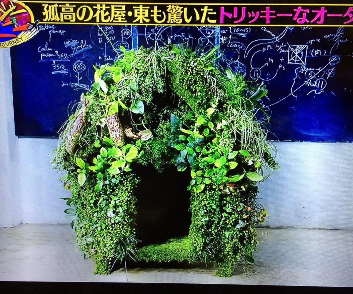 #クレイジージャーニー Latest News Trends Updates Images - chamomileflavor