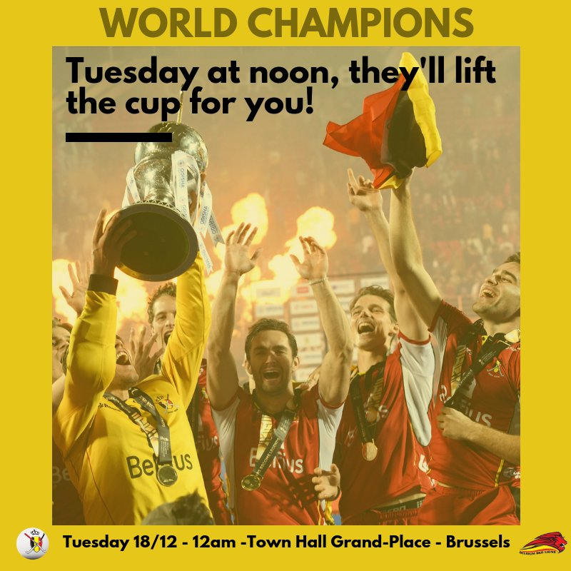 This Tuesday  at the lunchtime, we are expecting many of you at the Grand Place in Brussels. We will have the pleasure of meeting you, you who have trembled for us. We will introduce you to our new friend, the World Cup! BE THERE! #RoarTogether