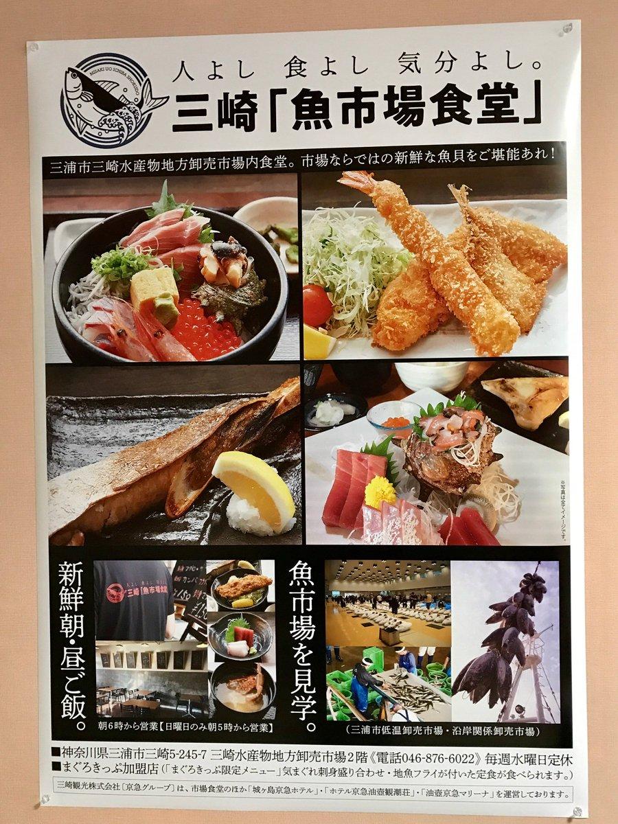 市場 食堂 魚 三崎