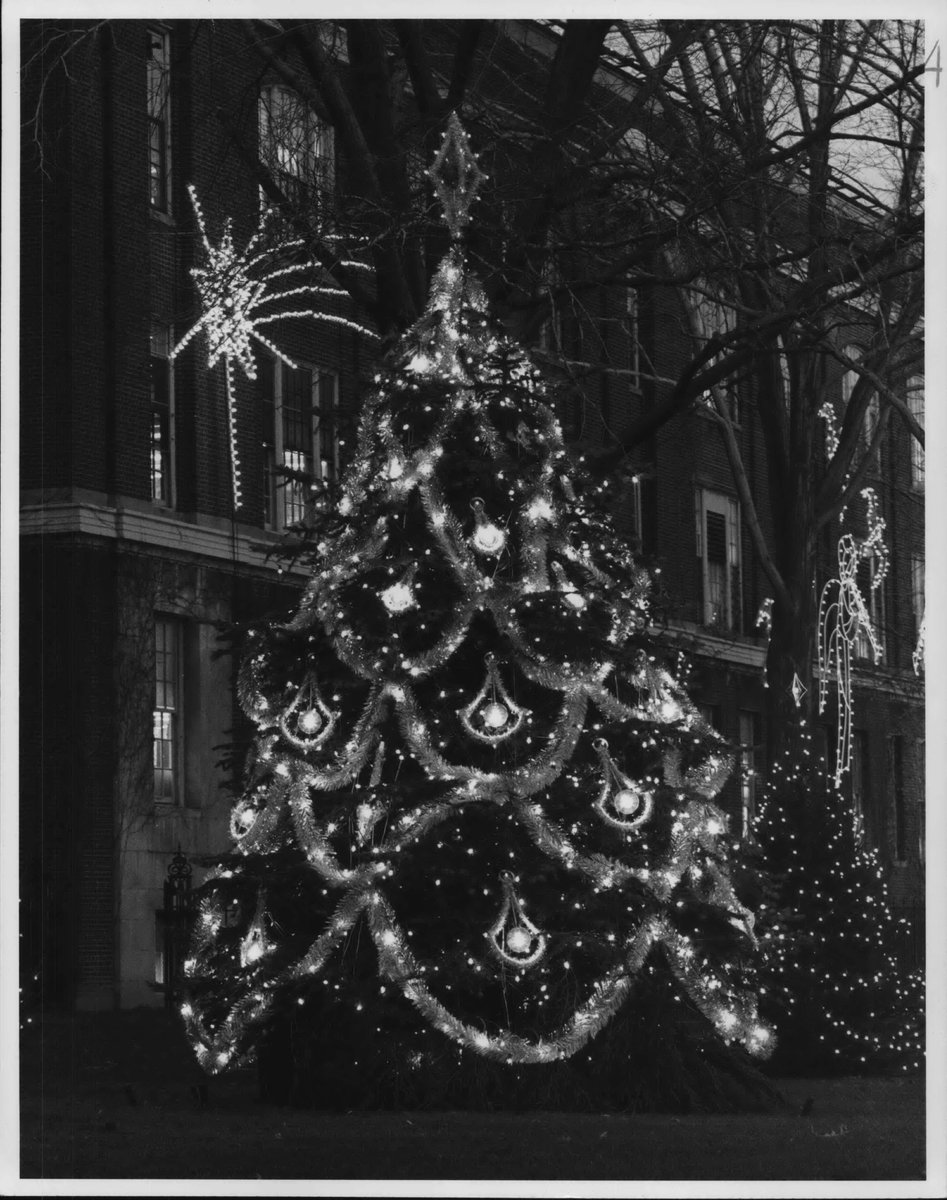 We ❤️ that sparkle ✨ Here's what the White House replica Christmas tree at Nela Park looked like in 1981.  Do you have memories of going to see the light displays at the GE Lighting headquarters?   📸: Plain Dealer Historical Photograph Collection