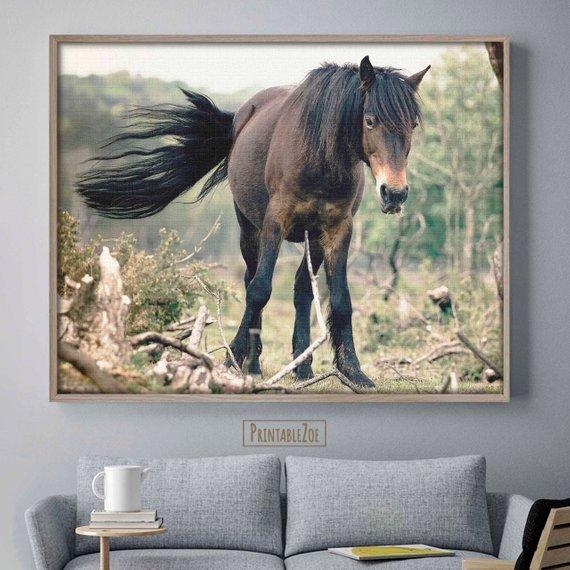 Carma Zoe On Twitter Wild Horse Art