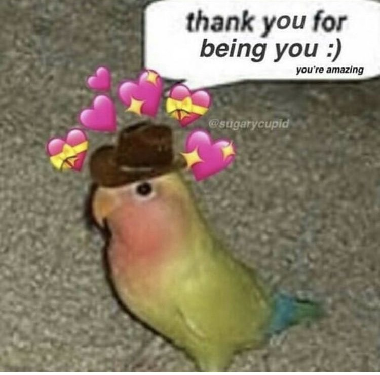 Wholesomememes On Twitter Oops I Meant Thanks For Being The