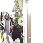 Package Thief Twitter Photo