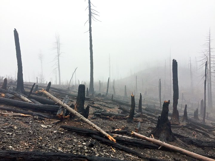 Flash flood watch for land burned by the Klondike and Chetco Bar fires. Between 3 and 6 inches of rain could fall in the area Tuesday, the weather service says.  http://www. thedailycourier.com/story.html?i=4 1599 &nbsp; … <br>http://pic.twitter.com/s3SOHmaQac