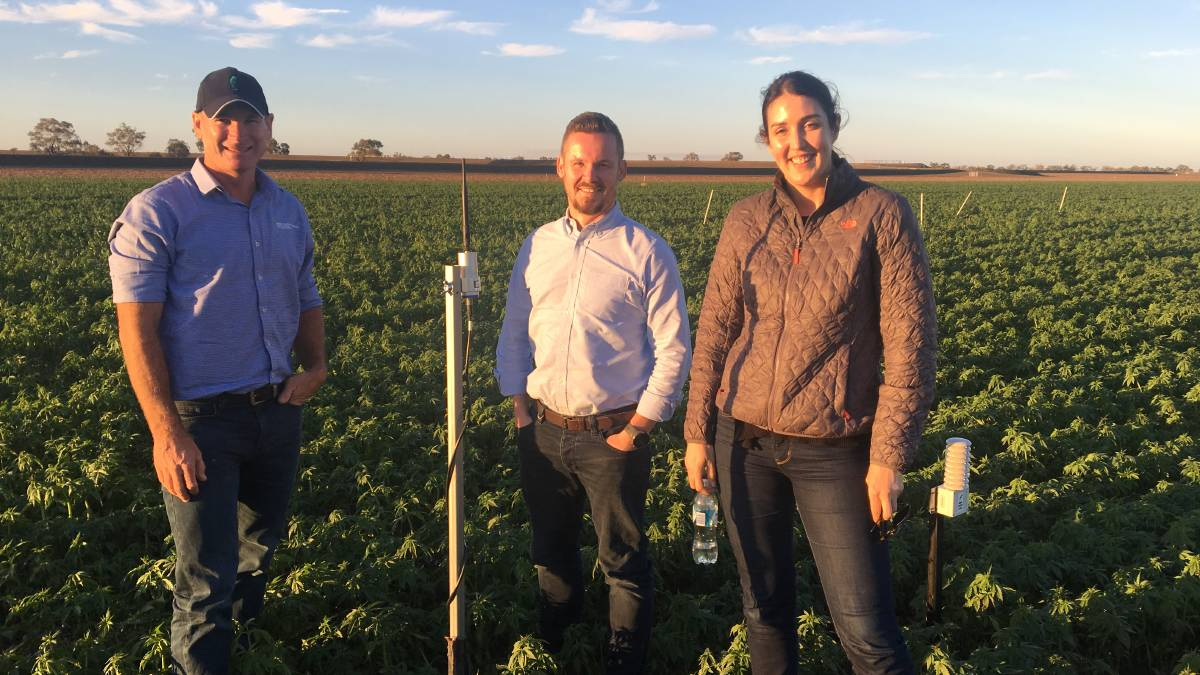 #LoRaWANinAction with member @NNNCoAus! #LoRaWAN is providing farmers in Australia with smarter irrigation solutions🌿🌾🌱 http://bit.ly/2QZQ8Zv