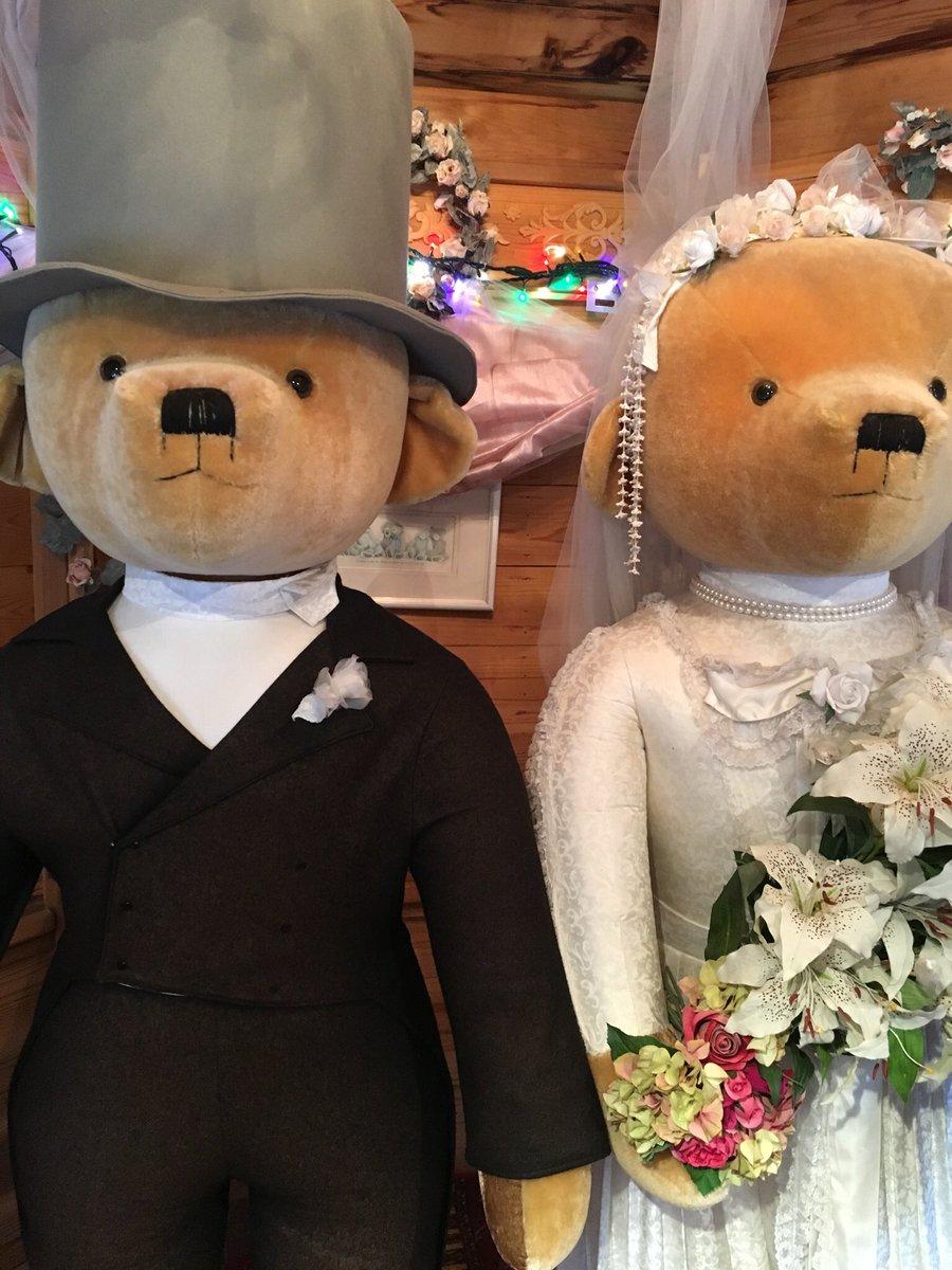 これを待ち受けにしてると結婚できる!ってジンクスがあって、私も結婚出来た。離婚しちゃうけどまた旦那と結婚出来るまでこれにしようʕ•ᴥ•ʔ #飛騨高山テディベアエコビレッジ