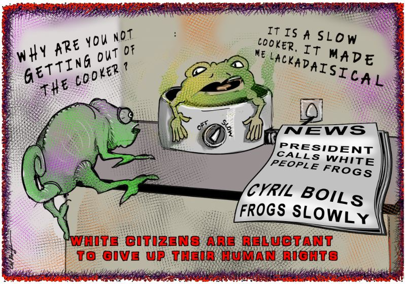 Why complain if hot water stops frogs from jumping. @willempet @AracellisLyall @realpietretief @Andre_Ronin @IamUncaptured #Lackadaisical