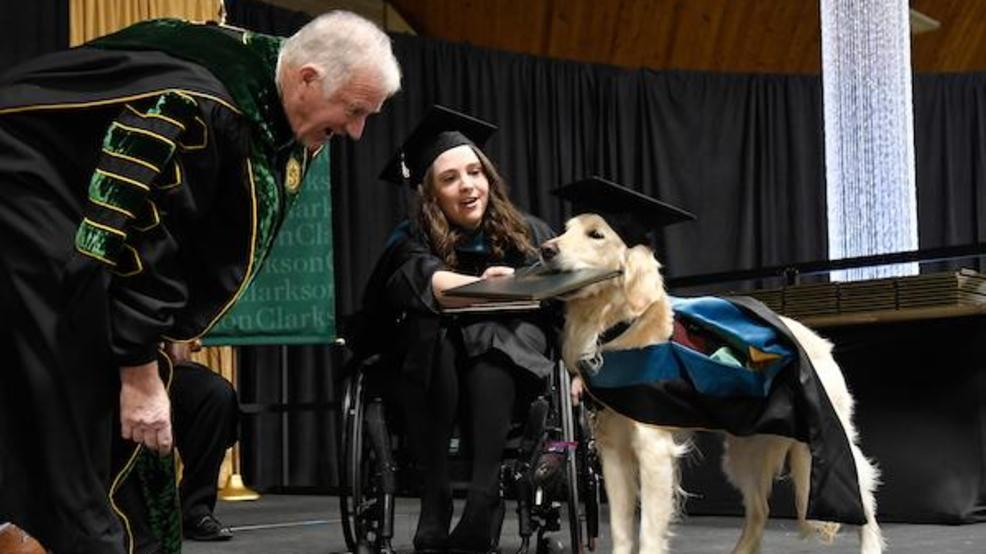 Good dog! Griffin the service dog received an honorary diploma for his work helping a North Carolina native earn her master's degree! https://t.co/CR353yhlW9