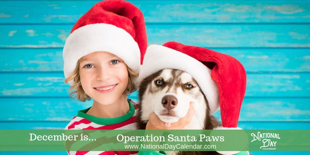Operation Santa Paws is observed from December 1st to December 24th. During this holiday season, let's show a little extra love to our furry friends by helping stock the shelters with much needed supplies. To find out how you can help > https://t.co/G8kSnzYmqt