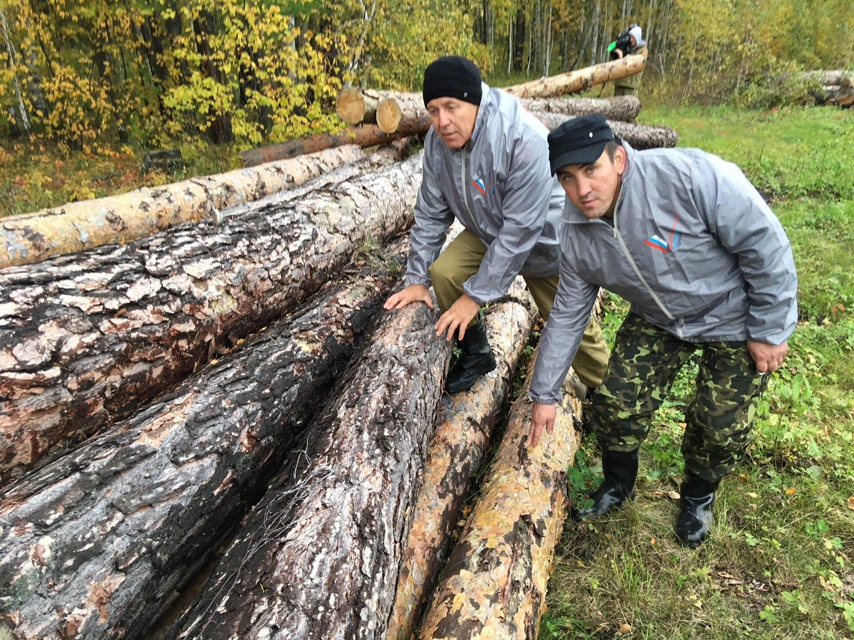 ноги работа вахта осинский лесхоз иркутской обл фото торт получается насыщенным