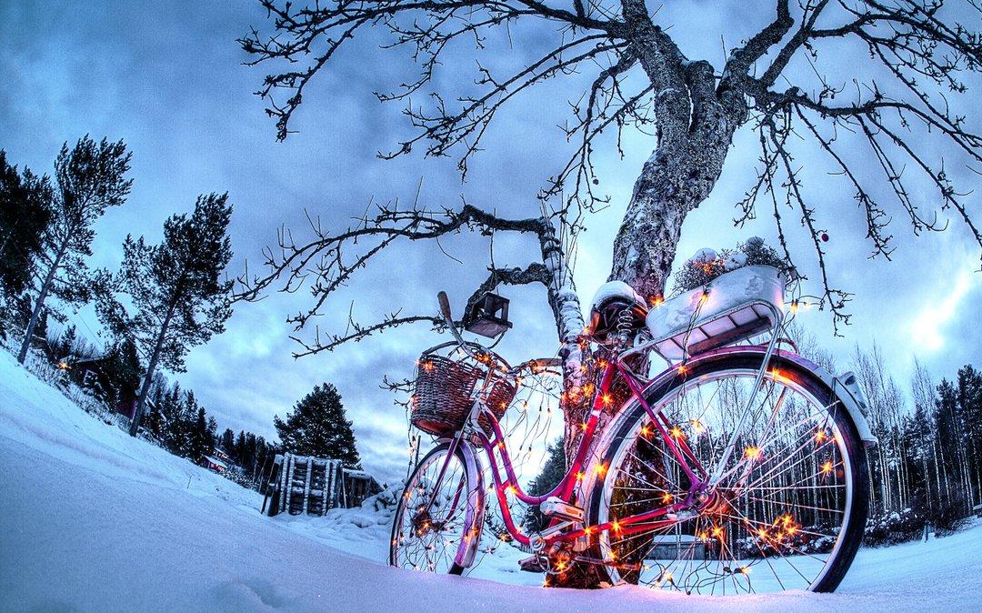 несмотря мелкие картинка велосипед рождество под снегом будет
