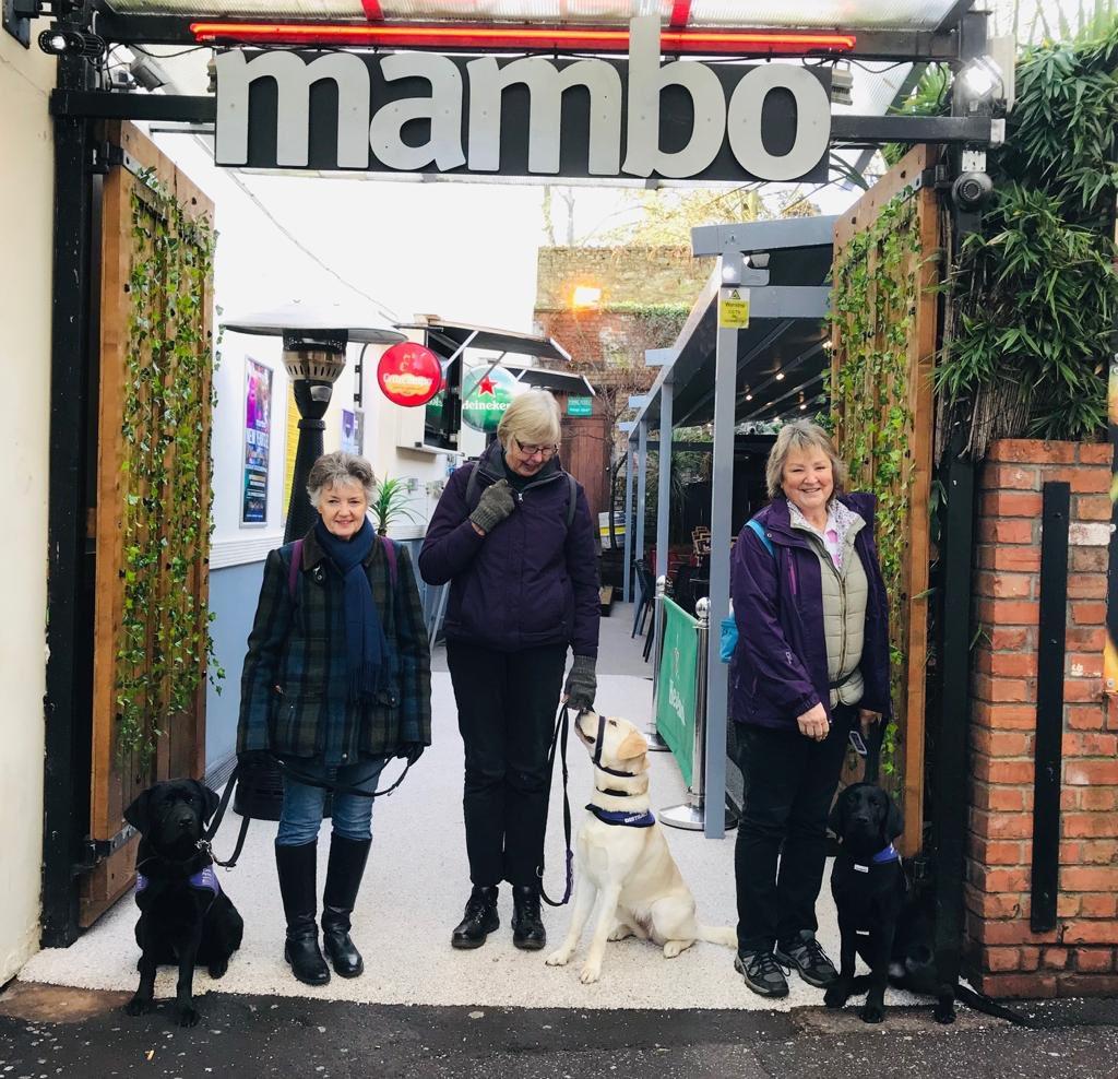 Mambo Taunton