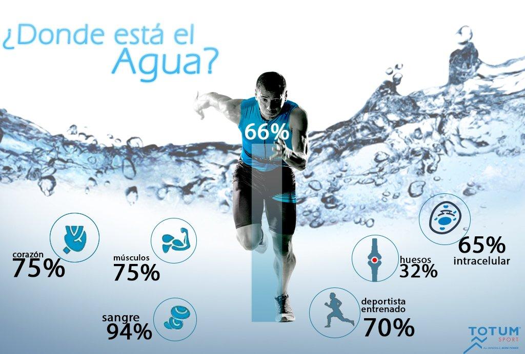 Dieta de un deportista nadador