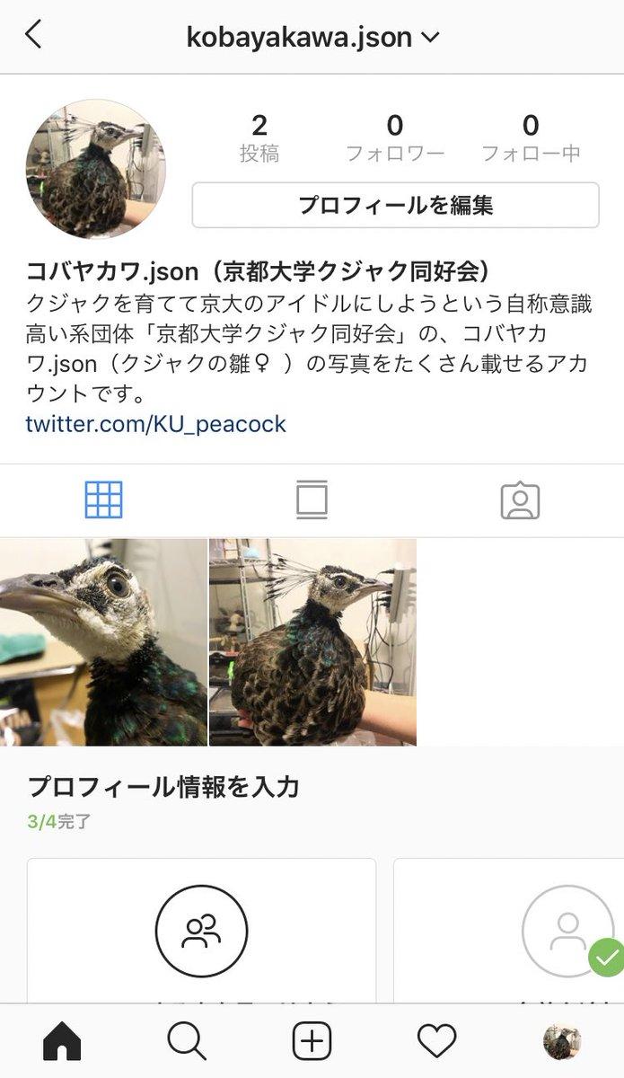 京都大学クジャク同好会さんの投稿画像