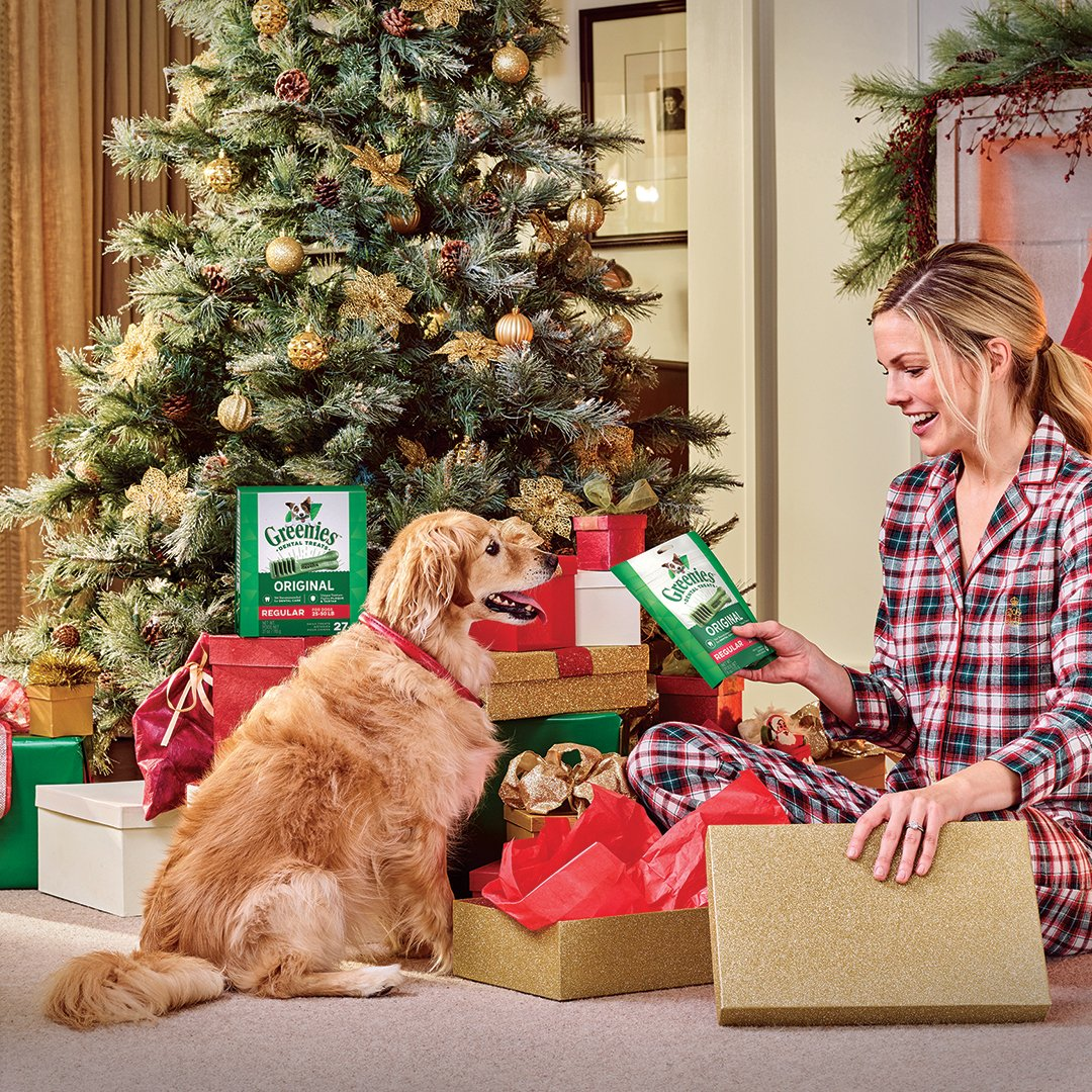 🐶 The Holidays are almost here. Make them smile brighter with some jolly good treats under the tree! 🎄🎁 Shop now at https://t.co/A1pumRMXJA! #greenies #happyholidays #dogtreats 😁 https://t.co/AMhxXT8pxE