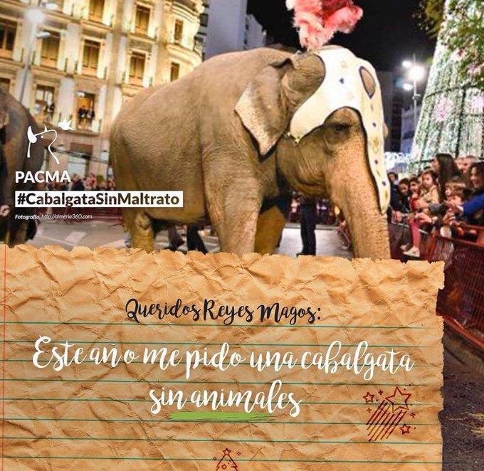 NO queremos animales obligados a recorrer las calles en cabalgatas de Reyes Magos, estresados por el ruido y el gentío. #FelizJueves a todas las personas que reivindican con nosotros Cabalgatas SIN Animales #CabalgataSinMaltrato 👑👑👑 🐘 Foto