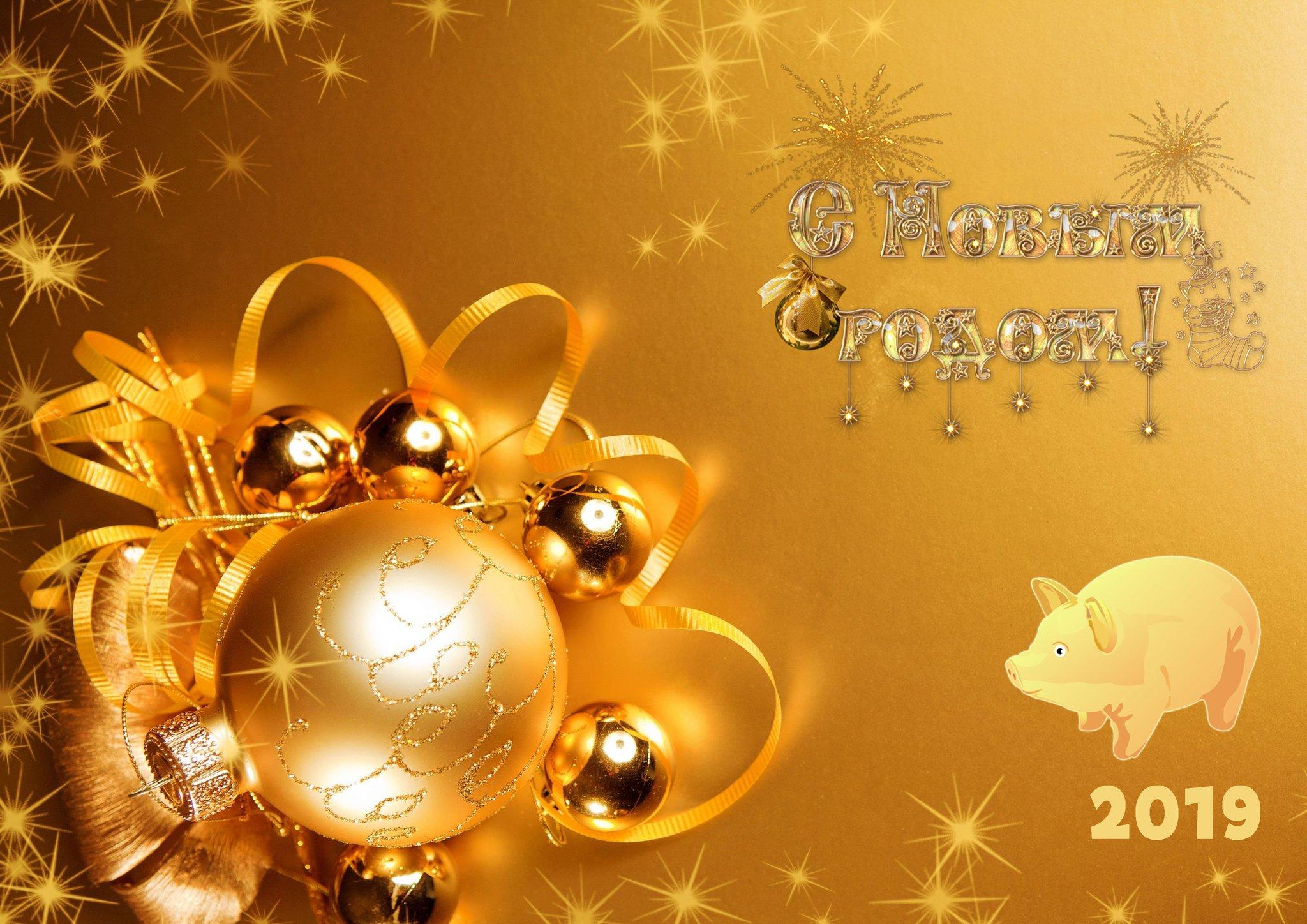 Днем, открытки поздравления с наступившим новым годом 2019 свиньи