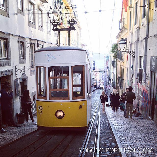 test ツイッターメディア - あけましておめでとうございます。今年も現地リスボンより最新情報を発信していきますので、みなさまよろしくお願いします! #リスボン #ポルトガル https://t.co/F5P0nKikoL