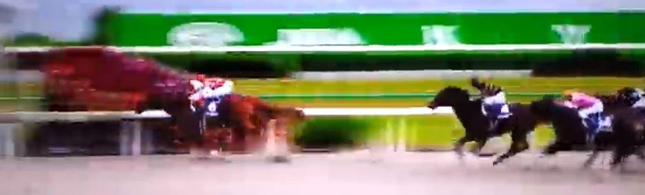 競馬動画: 2018JBCスプリント  グレイスフルリープでCルメール騎手がまたまたまたまた勝ちました。2018... https://t.co/HirKNrw09h …