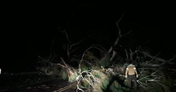 #Clima | Los fuertes vientos se sintieron en Santa Rosa y la zona: calles y rutas obstruidas