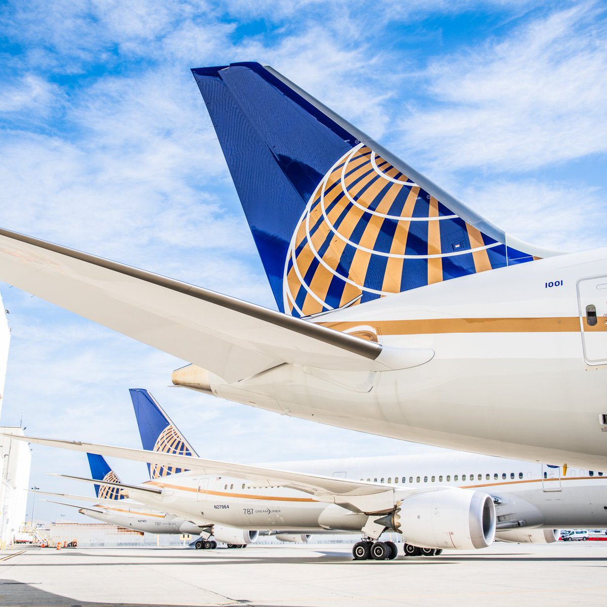 United Fleet/Network Thread - 2019 - Airliners net