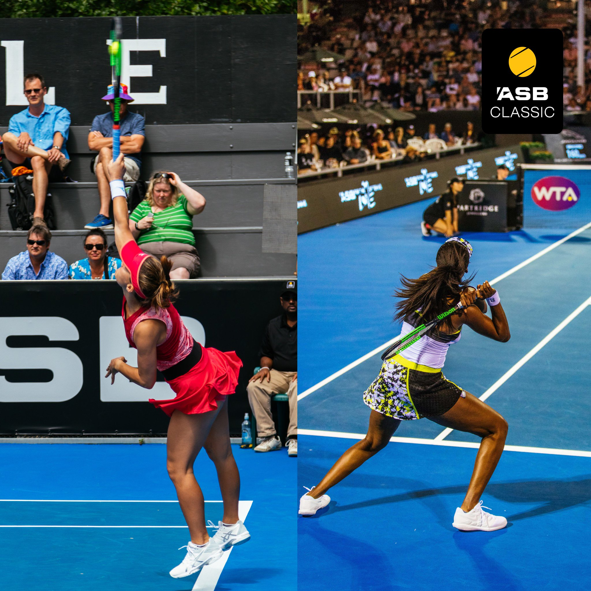 WTA AUCKLAND 2019 - Page 4 Dv9SvZdUcAEmdyq