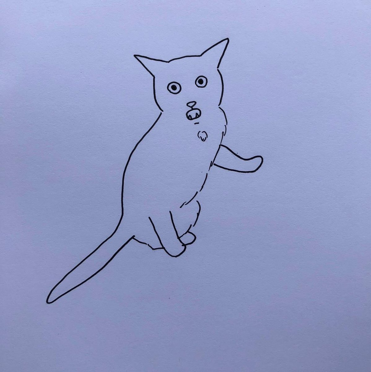 poorly drawn cats poorlycatdraw twitter