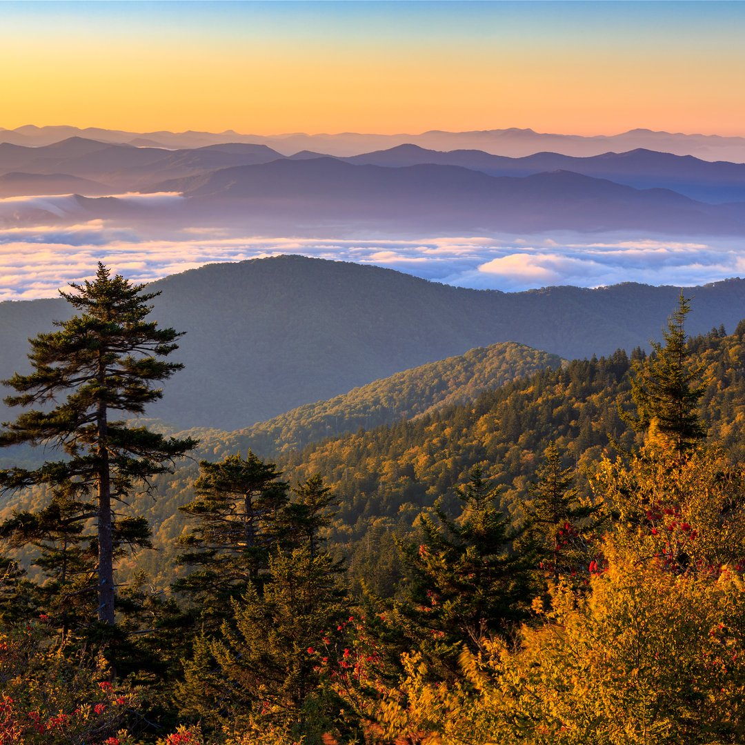 clingmans dome directions - HD1600×800