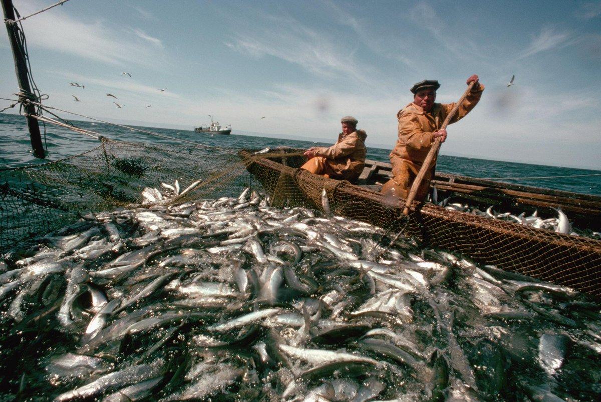 Рыбалка на байкале картинки