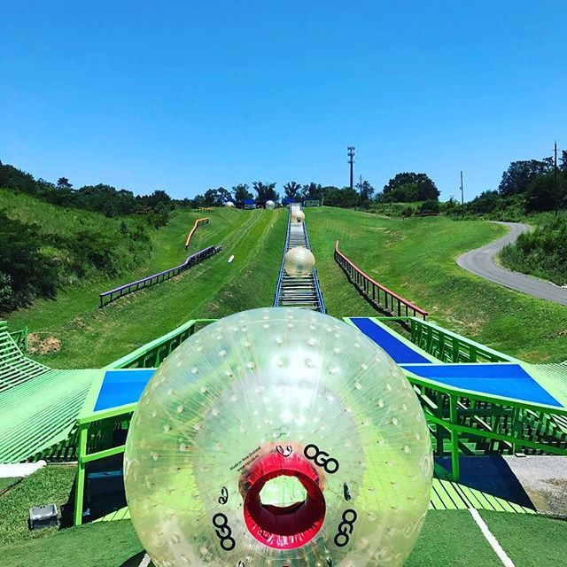 Outdoor Gravity Park On Twitter Zorbing Put It On Your Bucket List Outdoorgravitypark Mypigeonforge Bucketlist Https T Co D2h99rr0w6