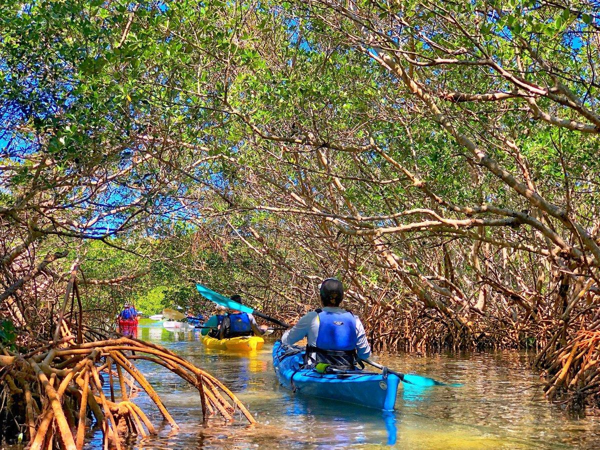 Coastal Kayak Charters