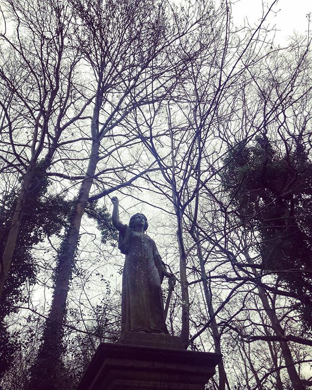 Nunhead Cemetery after a rainy morning. Not long now. 😊🎄🎄😀#twosleepstilchristmas ••• #sesussed #nunhead #nunheadcemetery #selondon #loveselondon #selondonliving #selondonlife #selondonwithkids