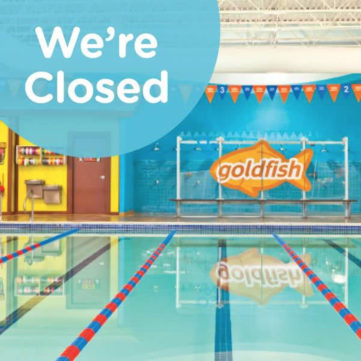 Goldfish Swim School At Goldfishswim Twitter