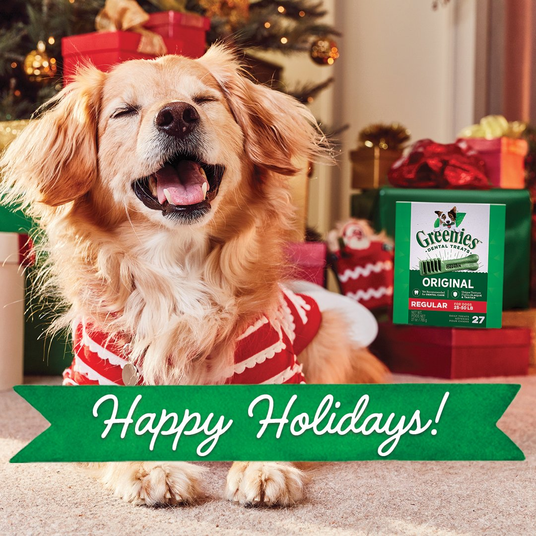 🐶 🎄 We hope your holidays are filled with bright smiles and jolly good treats. Happy Holidays from GREENIES! Shop now at https://t.co/A1pumRMXJA! 🎁 https://t.co/aHui86Yz9W