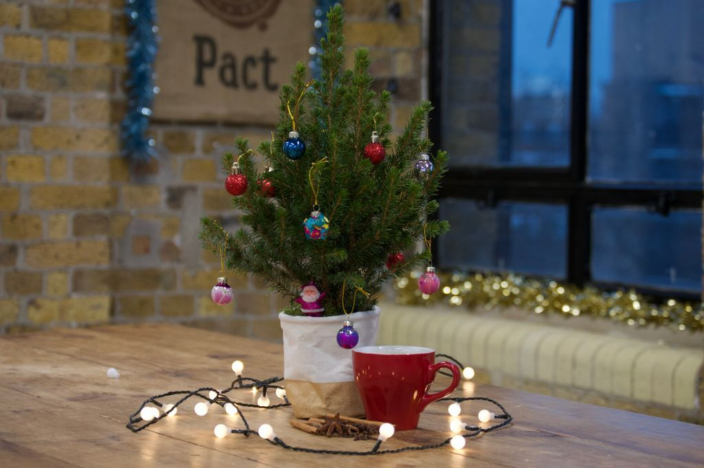 The Christmas Pact.Pact Coffee On Twitter Snuggle Up With A Brew It S