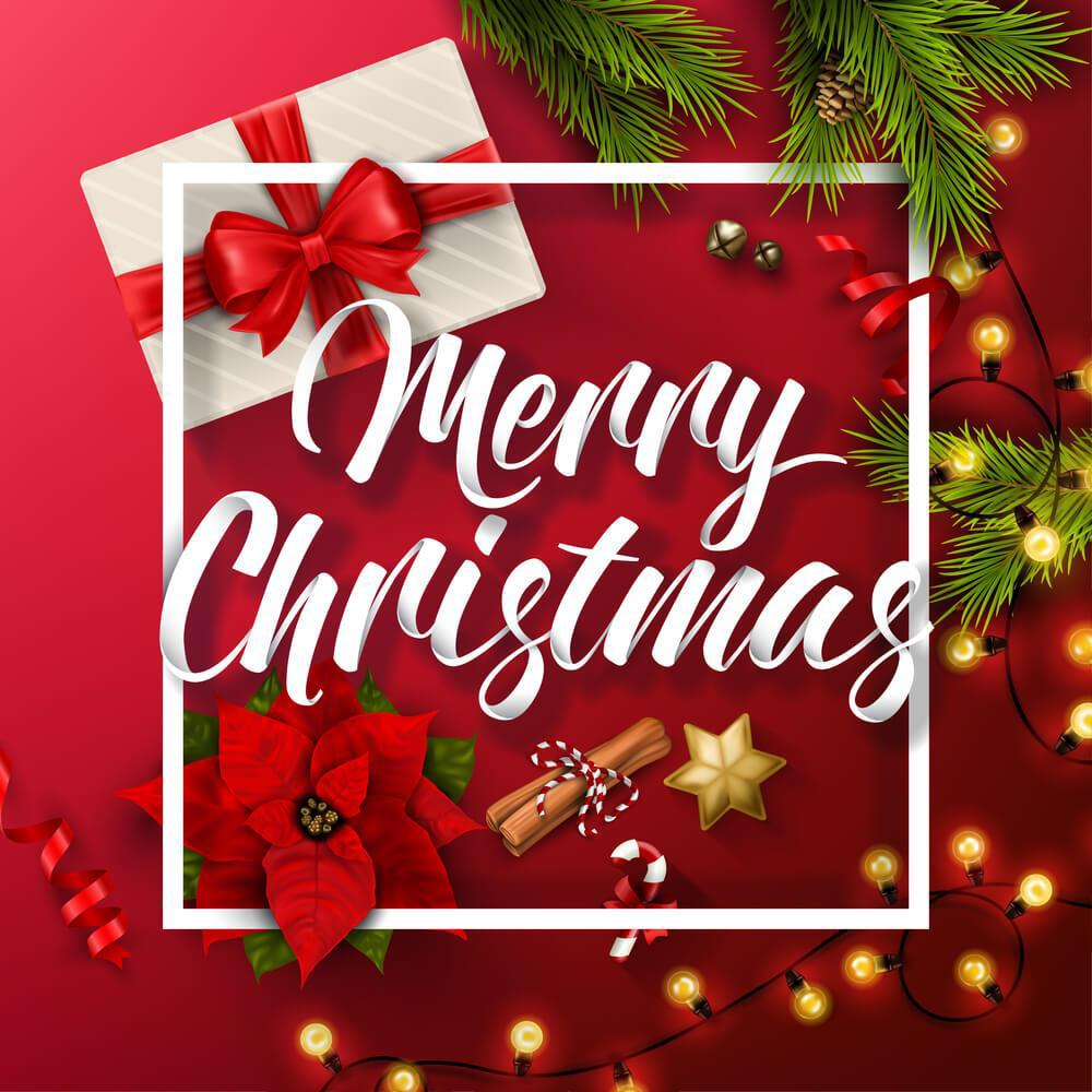 May this festive season sparkle and shine for all of you, may all your wishes and dreams come true, and may you feel this happiness all year round. Happy Christmas 🎄