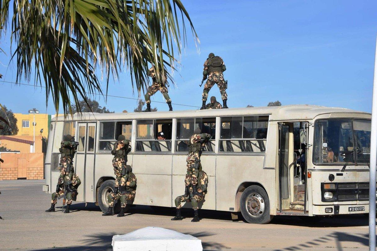 الجزائر : صلاحيات نائب وزير الدفاع الوطني - صفحة 24 DvRQH9HWwAEn3GL