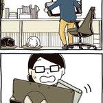 クッション性が高い猫!?おかげでキーボードが救われた!