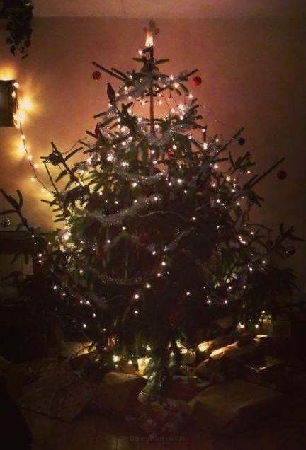 Frohe Weihnachten Hindi.Frohe Weihnachten Hindi Frohe Weihnachten Hindi Frohe