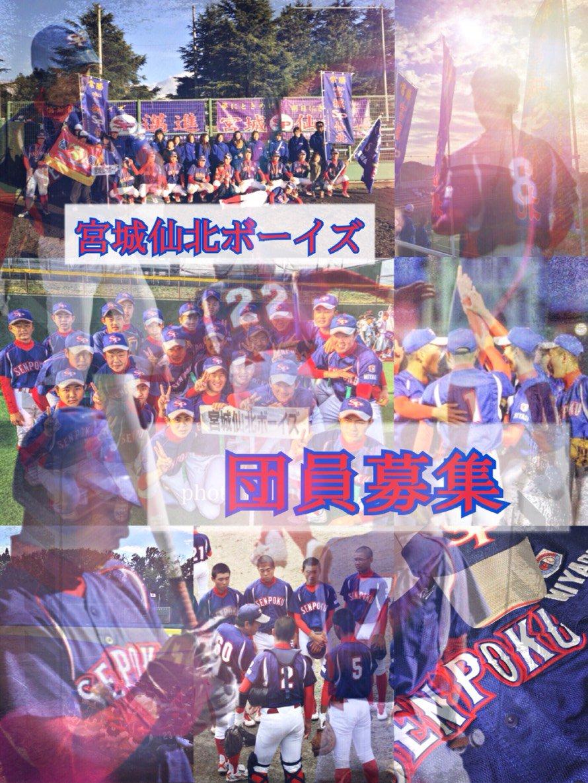 連盟 日本 少年 野球