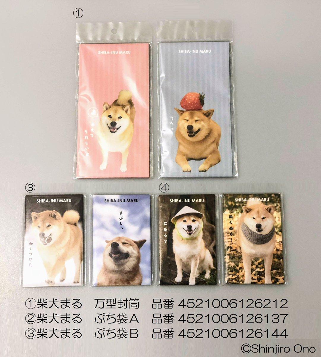 test ツイッターメディア - 2018年、SNSの人気者たちとのキャンドゥがコラボしたグッズにもぷち袋がたくさん! #お年玉 の#ポチ袋 としてはもちろん、ちょっとしたお手紙を入れる封筒にも☆  #柴犬まる #はりねずみのあずき #猫のすずめちゃん #StandardPoodleQooRikuGaku #犬 #日本犬 #大型犬 #猫 #はりねずみ #小動物 #お正月 https://t.co/YnOHH8Y3Zm