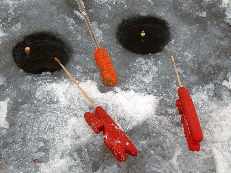 Плотву на поплавок зимой