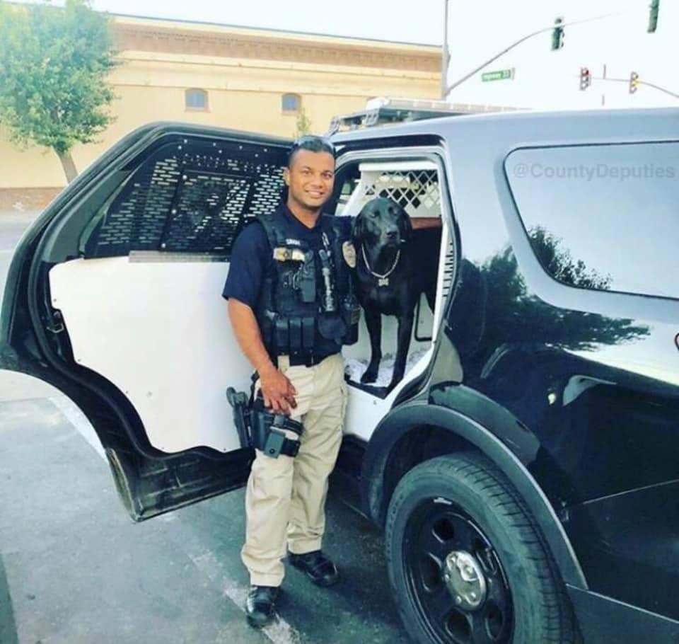Troy Police Dept  (@TroyPolice) | Twitter