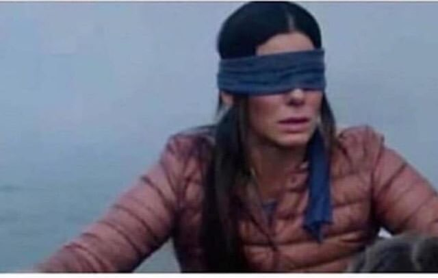 Name something that has to be said for you to remove your blind fold 😂🦜📦 #BirdBox