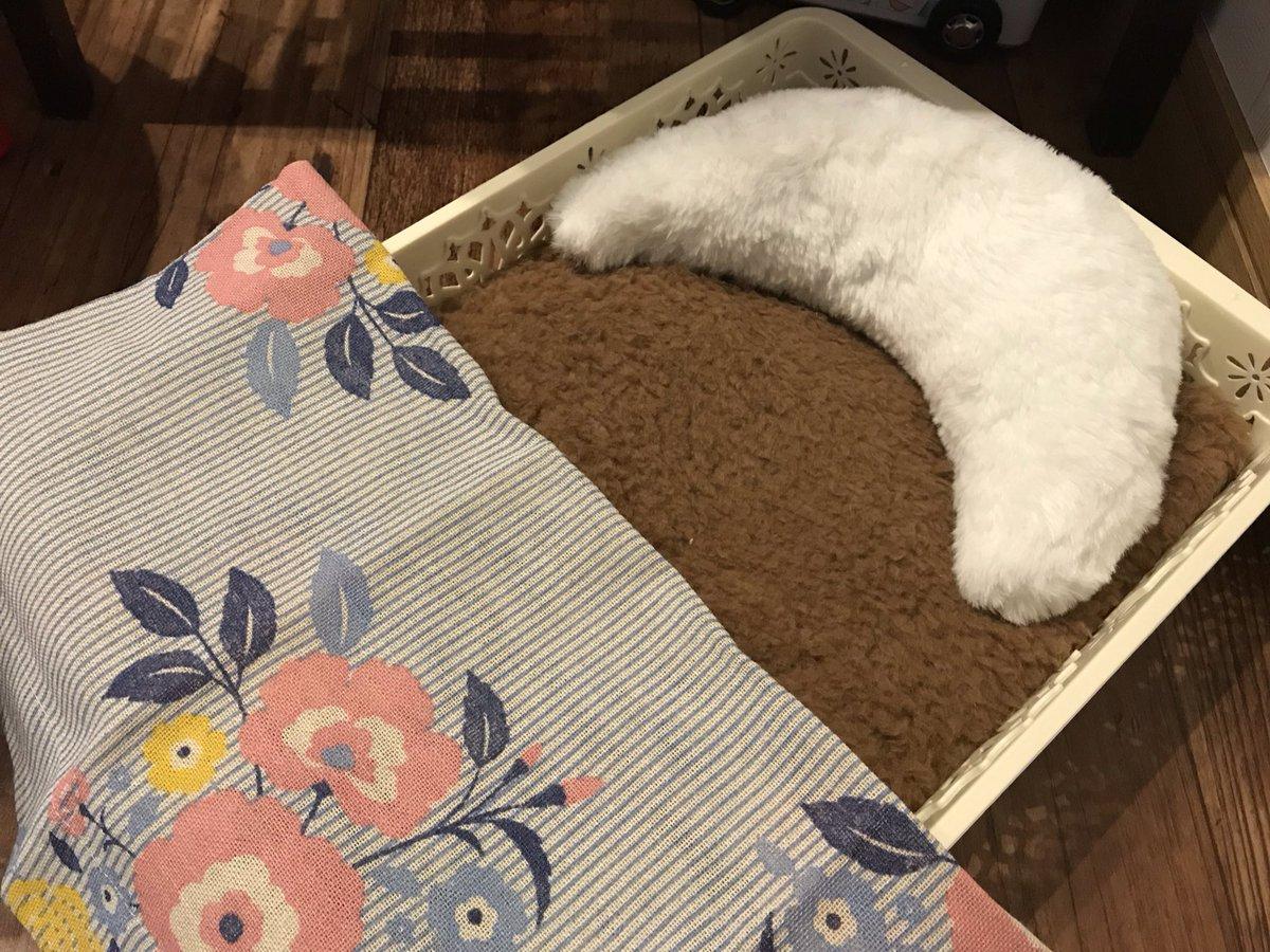test ツイッターメディア - #ダイソー と #セリア で仕入れた #ソランちゃん に使えそうなグッズ????その2?  A4サイズ書類ケースに、薄いブランケットを折りたたんで詰めただけ(笑)のベッド!三日月型ミニクッションを枕に。掛け布団はセリアのカフェカーテン。いずれ縫うか接着するかして、中綿詰める予定…ジュースもセリア! https://t.co/gfA9M7mcgC