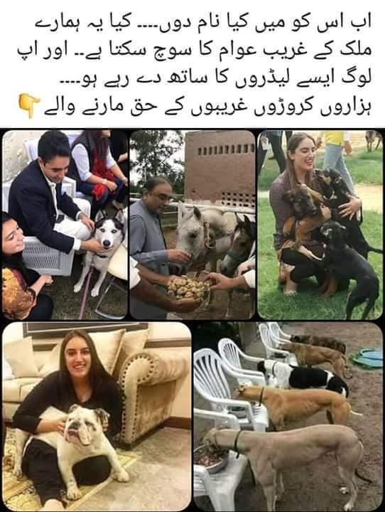 Media Tweets by Ahta muhammad khan (@AhtaKhan) | Twitter