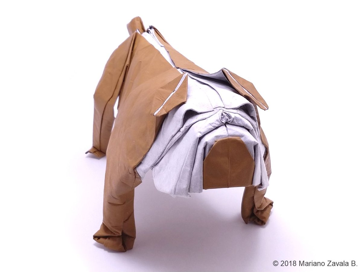 Origamime On Twitter Bulldog Designed And Folded By Mariano