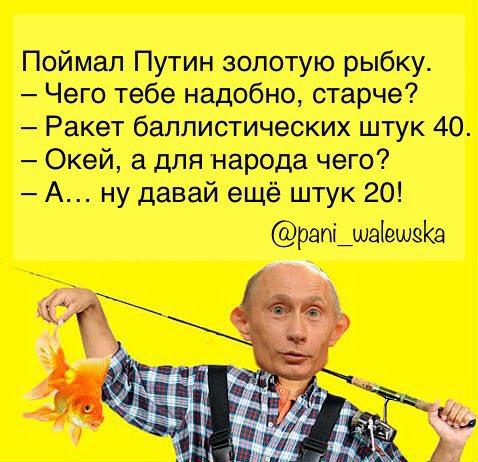 """Результат пошуку зображень за запитом """"Путин и золотая рыбка фото"""""""